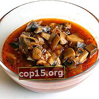 Ricette di funghi in salsa di pomodoro