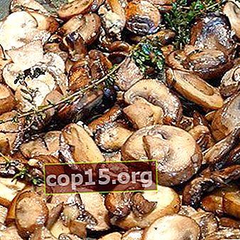 Piatti champignon stufati