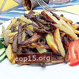 Funghi al latte con patate: ricette per cucinare piatti deliziosi