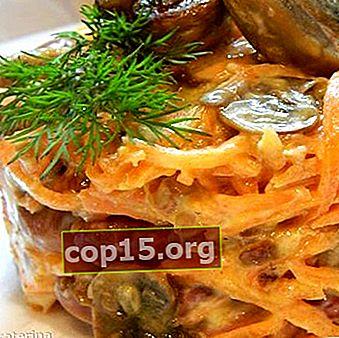 Come cucinare insalate con funghi prataioli e carote