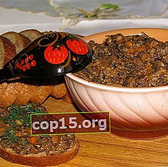 Funghi chiodini per l'inverno: ricette fatte in casa