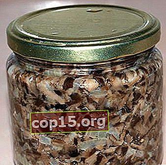 Caviale di funghi di agarichi di miele per l'inverno: ricette