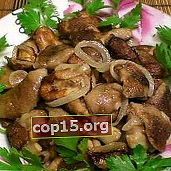 Funghi ostrica con cipolle: ricette per funghi fritti e in salamoia