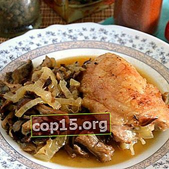 Funghi ostrica con pollo: ricette per piatti a base di funghi
