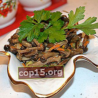 Come friggere i funghi freschi: ricette per piatti popolari