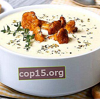 Zuppa di finferli: ricette per primi piatti