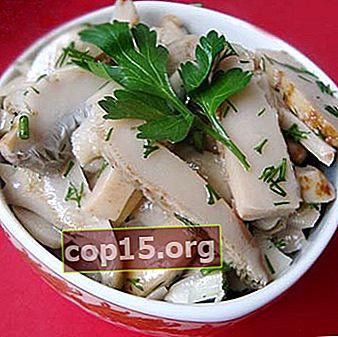 Funghi di latte salati caldi in barattoli e botti