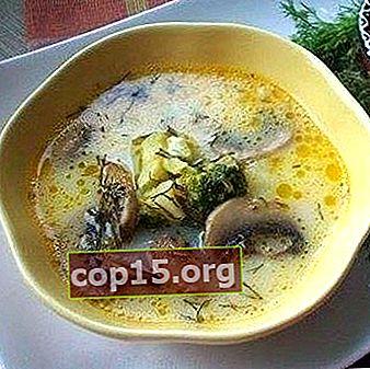 Zuppe di formaggio con funghi prataioli: ricette per primi piatti
