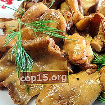 Hoe cantharellen te koken: zelfgemaakte recepten