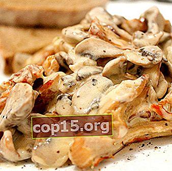 Ricette per cucinare i funghi porcini in panna acida