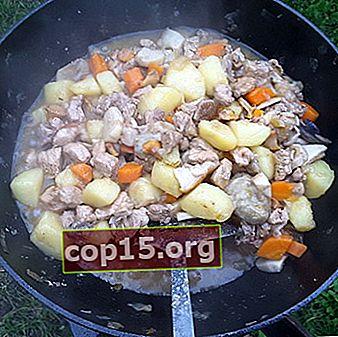 Come stufare le patate con i funghi in un calderone