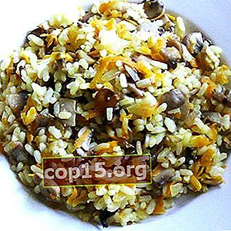 Piatti champignon con riso