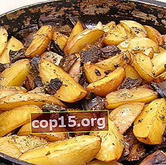 Ricette per patate fritte e in umido con funghi di bosco