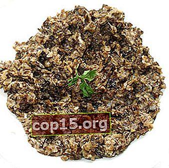 Caviale di agarichi al miele per l'inverno senza sterilizzazione: ricette per preparazioni di funghi