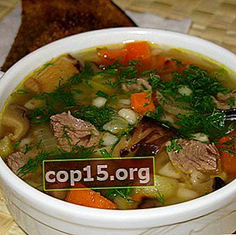 Zuppa di funghi e carne: ricette per i primi piatti