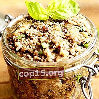 Caviale dalle file per l'inverno: ricette per preparazioni di funghi