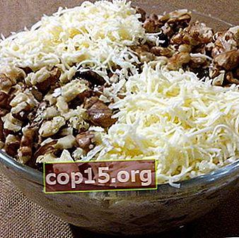 Insalate di funghi con miele di agarico e formaggio