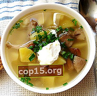 Zuppe di funghi al latte: ricette per primi piatti