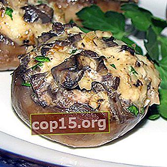 Funghi con carne macinata: ricette per piatti sostanziosi