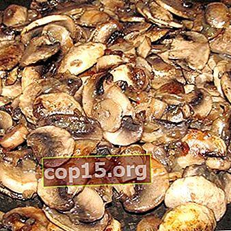 Piatti di champignon con cipolle