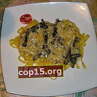 Pasta con miele di agarico: ricette per piatti prelibati