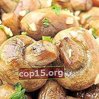 Quali piatti possono essere preparati con i funghi prataioli: le migliori ricette