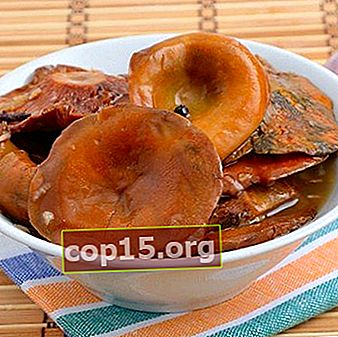 Ryzhiks con ajo: recetas para preparaciones para el invierno.