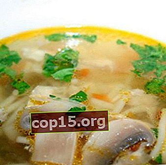 Sopas de champiñones y champiñones en caldo de carne y verduras