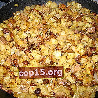Papas guisadas con agáricos de miel: recetas para platos de champiñones.