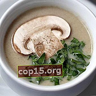 Crema di champignon: ricette per i primi piatti