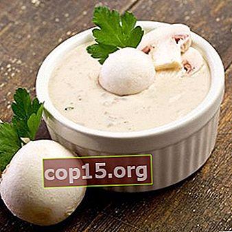 Salse Champignon: Ricette Salsa Di Funghi