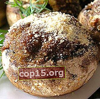 Funghi ripieni al forno: ricette popolari