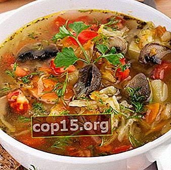Zuppa di cavolo magro con funghi: ricette facili