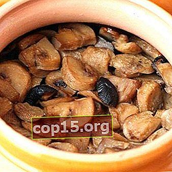 Hoe je champignons in potten kunt koken