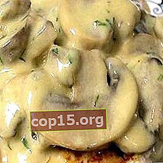 Salsa champignon per tutti i piatti