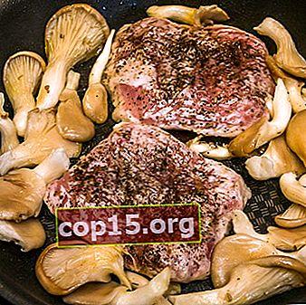 Oesterzwammen met vlees: recepten voor heerlijke gerechten