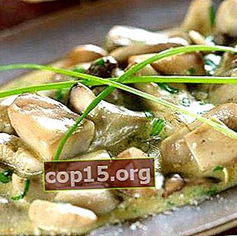 Eekhoorntjesbrood gekookt in een romige saus