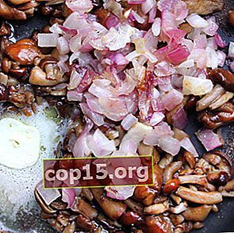 Come cucinare deliziosamente funghi fritti con cipolle