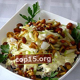 Ricette per insalate semplici e gustose con funghi sott'aceto