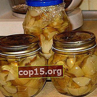 Decapaggio e salatura del burro per l'inverno: ricette senza aceto