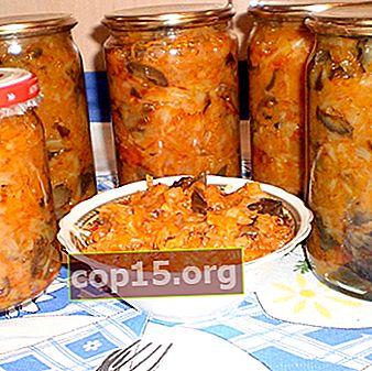Solyanka con funghi per l'inverno: ricette per la conservazione domestica