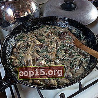 Burro fritto in panna acida: ricette per piatti sostanziosi