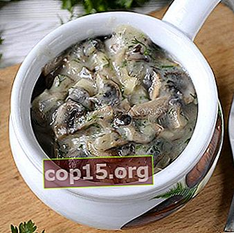 Champignons i grädde: recept på svamprätter