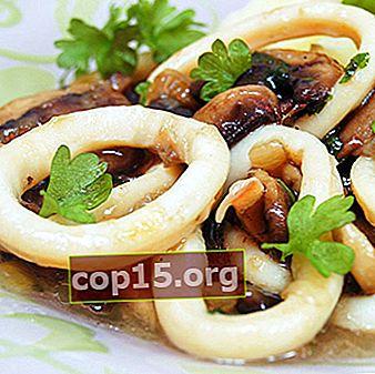 Tioarmad bläckfisk med champinjoner: recept på varma och kalla rätter