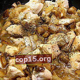 Ciuperci cu carne de pui: rețete pentru preparate delicioase